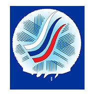Nizhny Tagil logo