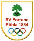 Poehla logo